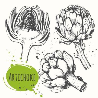 Cuadro Aartichoke. Conjunto de mano dibujado alcachofa. Comida orgánica fresca.