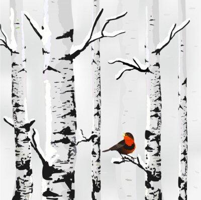 Cuadro Abedul en la nieve, tarjeta de invierno en el vector