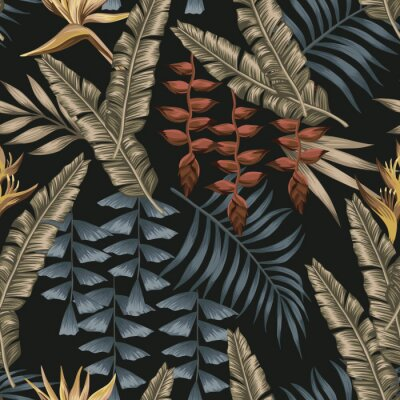 Cuadro Abstract color tropical seamless black background