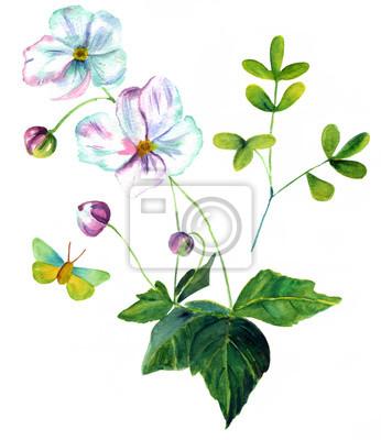 Acuarela Dibujo De Rama De Flores Blancas Hojas Verdes Y Mariposa