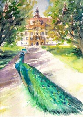 Cuadro Acuarela ilustración de pavo real en el parque y la fachada frontal del castillo Eggenberg en Graz, Estiria, Austria
