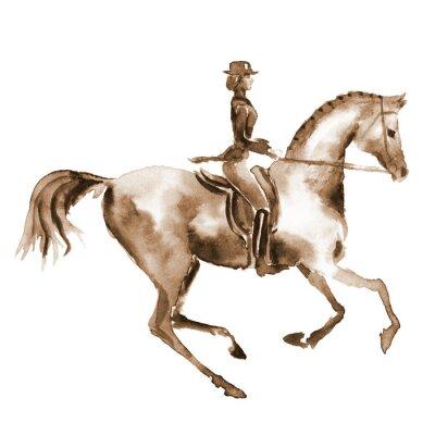 Cuadro Acuarela jinete y caballo de doma en blanco. Deportes ecuestres. Fondo de equino del ejemplo de la pintura de la mano.