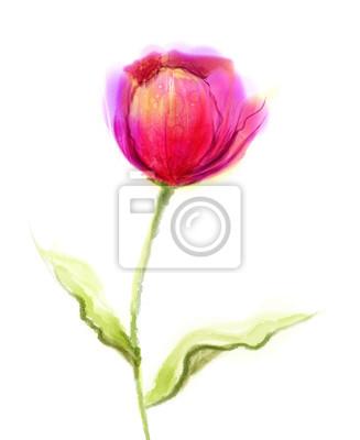 Acuarela pintura rosa, flor de tulipán rojo con hojas verdes ...