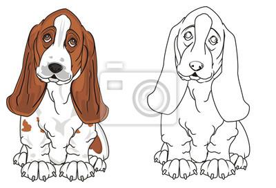 Cuadro Afloramiento Perro De Afloramiento Perro Cachorro Mascota