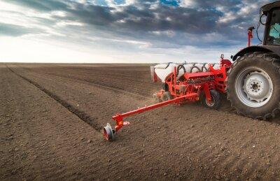 Cuadro Agricultor con sembradora de sembrado - la siembra de cultivos en el campo agrícola en primavera