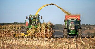Cuadro Agricultura en Francia