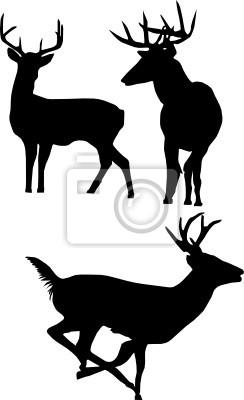 aislados siluetas de ciervos
