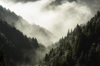 Cuadro Alta montaña en niebla y nubes