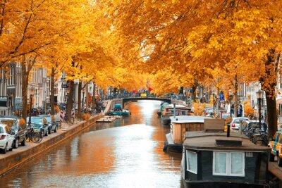 Cuadro Ámsterdam.