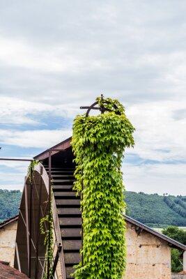 Ancien moulin à blé du 19ème siècle à Nantoin