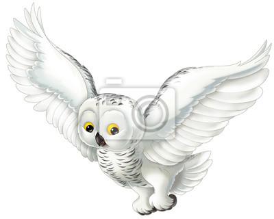 Animal de la historieta - búho ártico - ilustración para niños ...