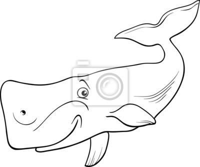 Cuadro Animales Ballena Página Para Colorear De Dibujos Animados