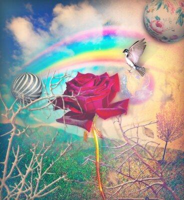 Cuadro Arco iris y rosa roja en el valle verde