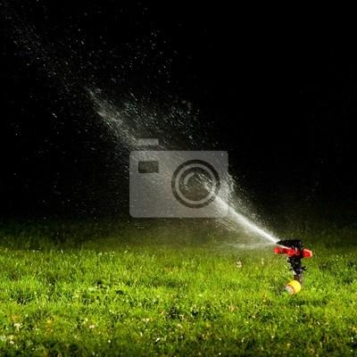 aspersor de riego por aspersión de agua sobre la hierba verde en la noche