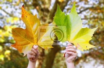 Cuadro automne