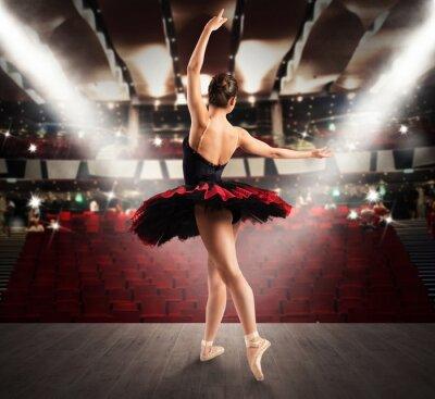 Cuadro Bailarín clásico en el teatro