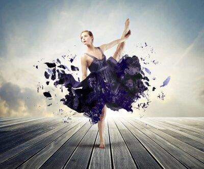 Cuadro Ballet Creativa