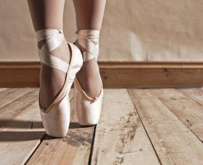 Cuadro Ballet Shoes en suelo de madera