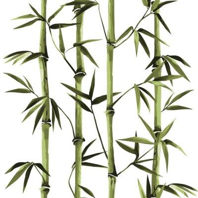 Cuadro Bamboo Seamless Vertical Border on white background