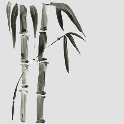 Cuadro Bambú en estilo de pintura japonesa. Tradicional hermosa acuarela dibujado a mano ilustración