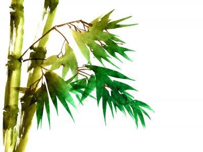 Cuadro Bambú tropical con hojas