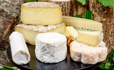 Cuadro bandeja con diferentes quesos franceses