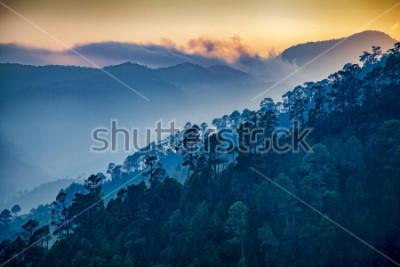 Cuadro Beautiful view of Foggy pine forest and sunrise at himalaya range, Almora, Ranikhet, Uttarakhand, India.