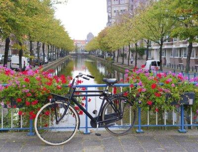 Cuadro bicicleta en un puente