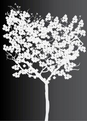 Cuadro blanco la silueta del árbol