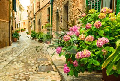 Blumen Strasse im Dorf Fornalutx, schönes altes Bergdorf, Mallorca España