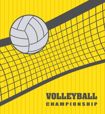 Cuadro Bola del voleibol