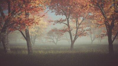 Cuadro Bosque del otoño en la niebla.