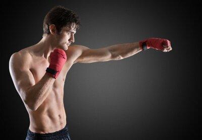 Cuadro Boxeo.