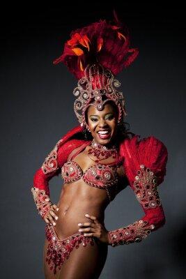 Cuadro Brazilian Samba Dancer