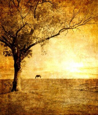 caballo en la puesta del sol - cuadro entonado en estilo retro