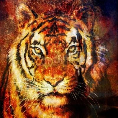 Cuadro Cabeza de tigre, color abstracto Fondo, collage de computadora, Contacto con los ojos
