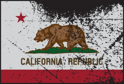 Cuadro California Flag Grunged