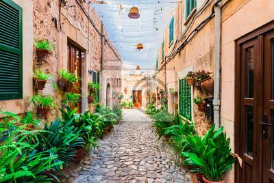 Calle en el pueblo de Valldemossa Mallorca España