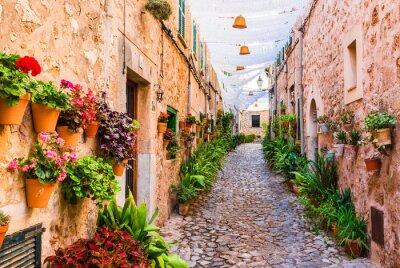 Calle pintoresca con flores en una ciudad de la colina español