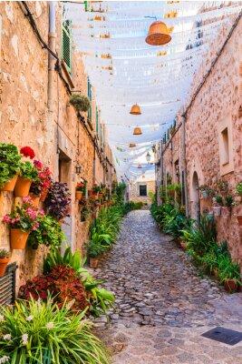Calle típica del antiguo pueblo de Valldemossa Mallorca España