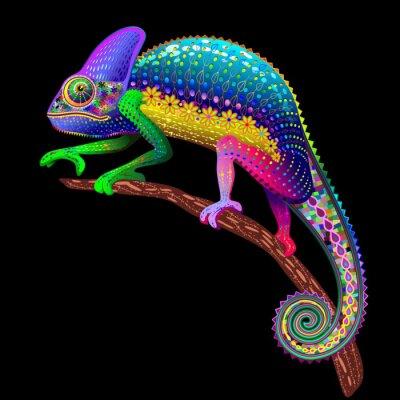 Cuadro Camaleón Fantasy colores del arco iris