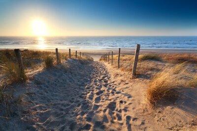 camino a la playa de arena en el mar del Norte
