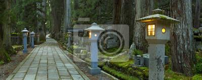Camino a través de Koyasan Okunoin cementerio, Wakayama, Japón