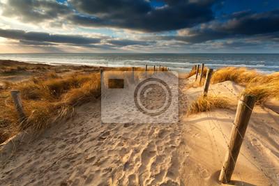 camino de arena a la playa del mar del Norte