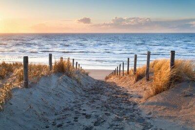 camino de arena de la costa del mar del Norte al atardecer