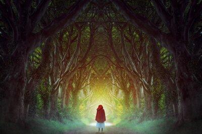 Cuadro Camino del bosque oscuro