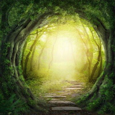 Cuadro Camino en el bosque oscuro