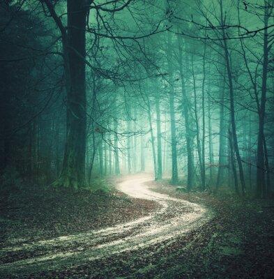 Cuadro Camino forestal color del otoño Magia. Color árbol soñador bllue verde paisaje brumoso bosque con bobinado fondo del camino. Fantasía de colores del bosque. Efecto de filtro de color utilizado.