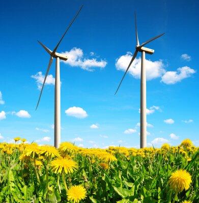 Cuadro Campo de dientes de león con turbinas de viento. Energia limpia.