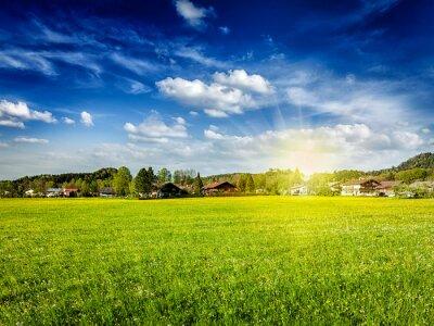 Cuadro Campo prado campo con sol y cielo azul